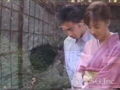 Naughty Japanese bride, Ruri Narumiya got fucked, uncensored Thumb
